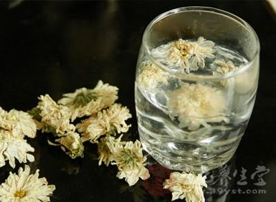 菊花茶一直都是花茶里面卖的好的一种