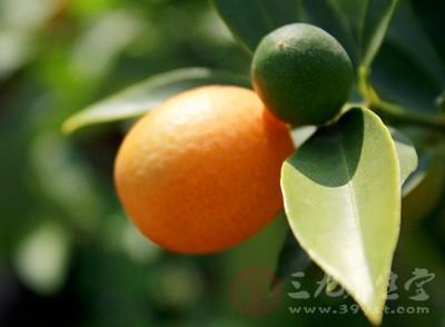 孕妇可以吃橘子吗 孕妇吃橘子需要注意什么