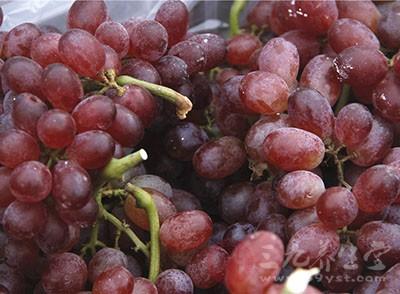 坐月子能吃葡萄吗 坐月子吃葡萄竟有这些作用
