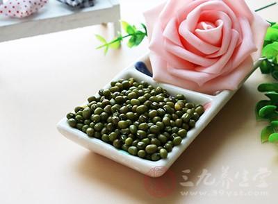 孕妇可以吃绿豆吗 孕妇吃绿豆有哪些要注意的
