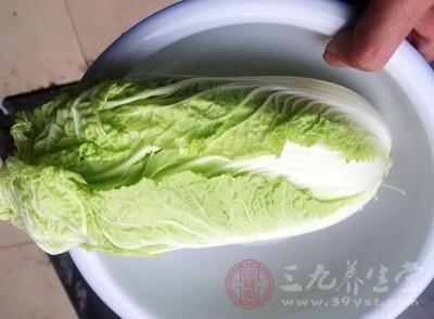 大白菜是我们冬天经常吃的蔬菜