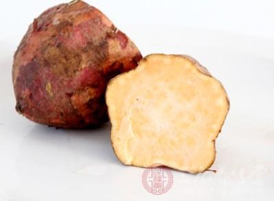 红薯脂肪含量低,产热少