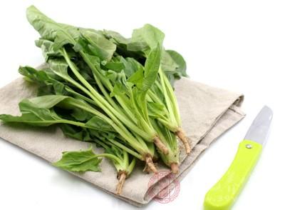 经常食用菠菜还有抗衰老的作用