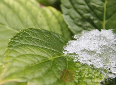 小雪節氣如何養生 小雪節氣這樣做延年益壽