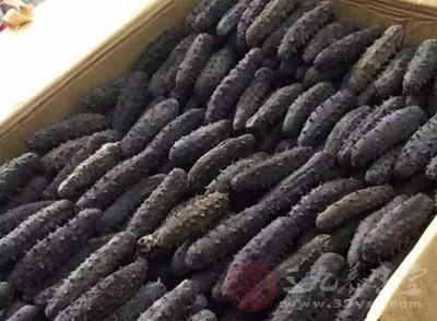 吃海参有什么好处 海参有哪些营养价值