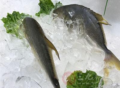 在鱼皮中同样含有丰富的胶原蛋白