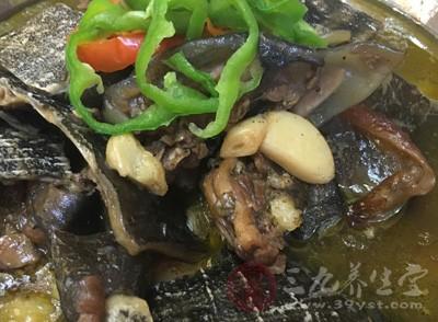 甲鱼的营养价值 甲鱼还有这种功效