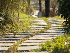 蜿蜒曲折的石板小路