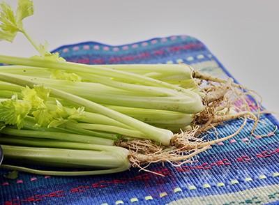 芹菜是一种非常有疗效的降血压蔬菜