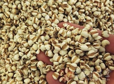 红豆薏米是主食吗图片