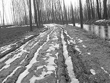 白雪皑皑后的土路