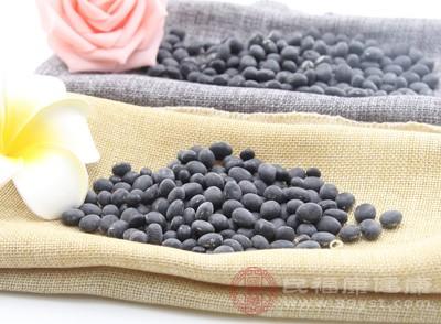 而黑豆是各种豆类中蛋白质含量高的