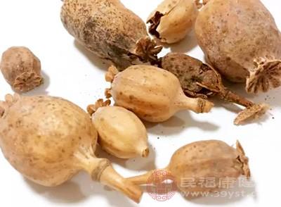 有害的非食品原料罂粟碱及那可丁
