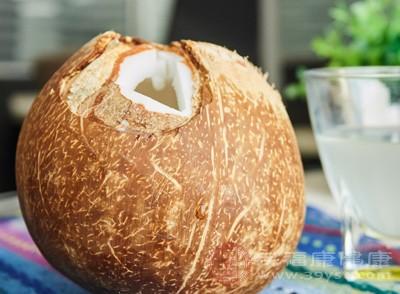 因为椰子也是寒性水果