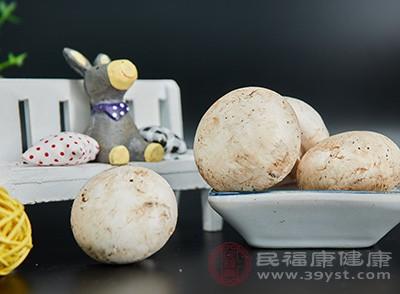 蘑菇和鸡蛋可以一起吃吗 吃蘑菇需注意这些