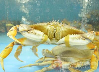 螃蟹什么季节最好吃 吃螃蟹要选对时间