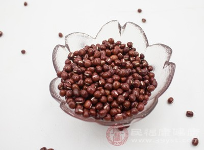 脱发吃什么 多吃豆子竟能改善这种问题