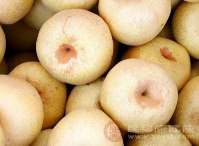 梨中富含糖、蛋白质、脂肪、碳水化合物及多种维生素