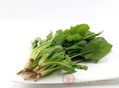 菠菜的营养价值 菠菜与它同食会形成结石