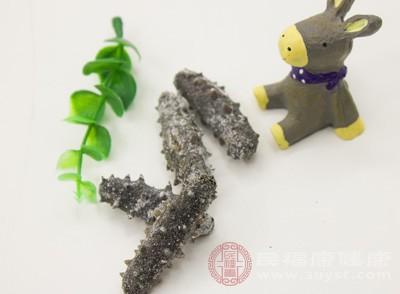 海参泡发后怎么吃 食用海参要注意什么