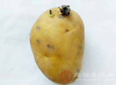 食发芽土豆易中毒 春季餐饮食品安全消费提示