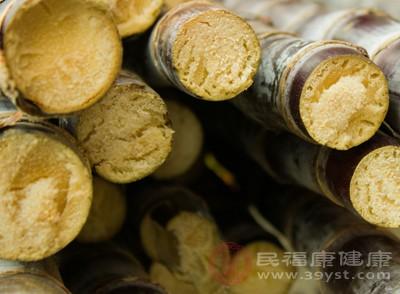 甘蔗是人们喜爱的冬令水果之一,其含糖量十分丰富