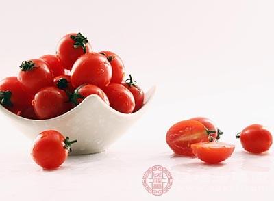 番茄的功效与作用 常吃番茄有五大奇效