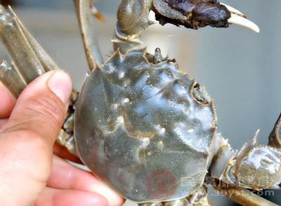 少吃海鲜类食品。像龙虾,螃蟹,淡水里的鲤鱼等都是不能吃的