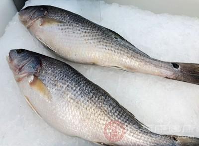 魚類是我們在生活中不可缺少的一種食物