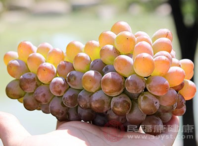 葡萄创意吃法 没想到竟然还能够这么吃