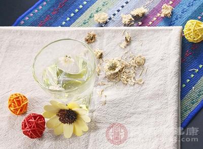 菊花茶的功效与作用 菊花茶可以预防这些疾病