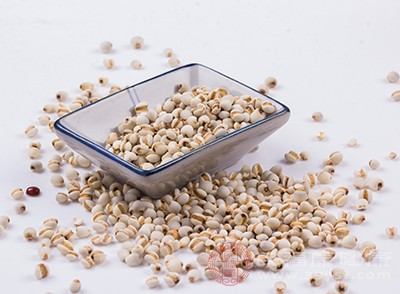 薏米是可以去除湿气的食物