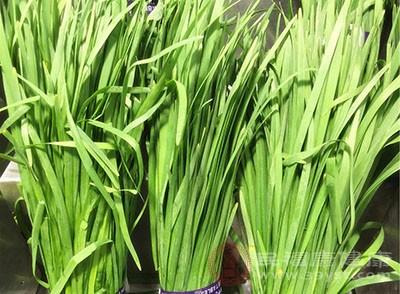 韭菜是墨綠色食物
