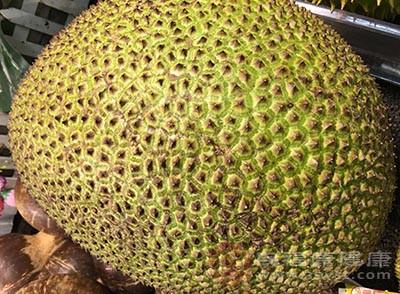 菠萝蜜中提取的菠萝蛋白质与抗菌素及其他药物并用