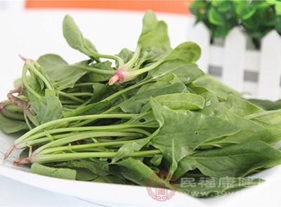 菠菜的营养价值 这些食物不能和菠菜同吃