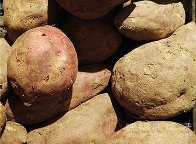 由于红薯能供给人体大量的黏液蛋白、糖