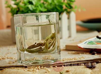 苦丁茶的功效 喝苦丁茶需注意这些
