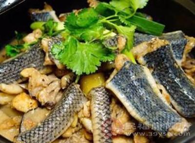 蛇肉的功效 蛇肉不能和这些食物同吃