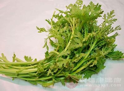香菜的副作用 香菜这样做美味又营养