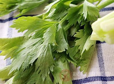 芹菜的营养价值 这种蔬菜可以帮助你减肥