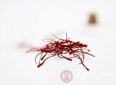 藏红花对肾脏也具有保护的作用