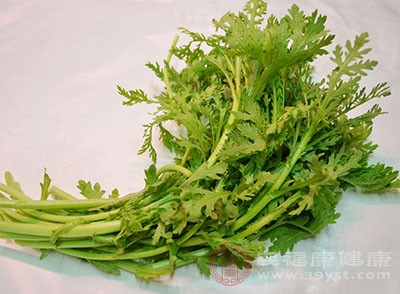 芹菜的功效 多吃这种菜让你天天好气色
