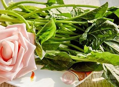 菠菜中所含丰富的类胡萝卜素、抗坏血酸