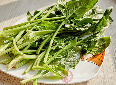 菠菜的胡萝卜素含量可和胡萝卜媲美