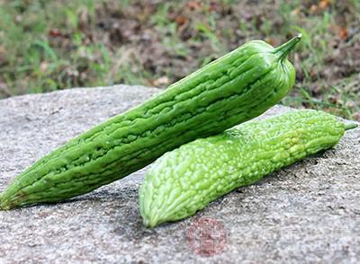 苦瓜含有大量的维生素