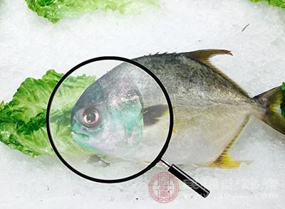 科学认知食品安全与食品添加剂研讨会在京举办