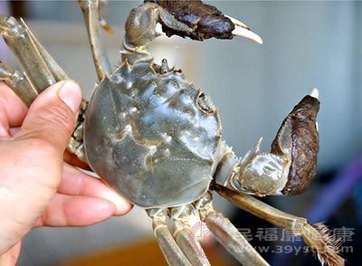 螃蟹的功效 想不到这种食物竟能抗结核