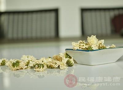 菊花茶是一種涼性的飲品