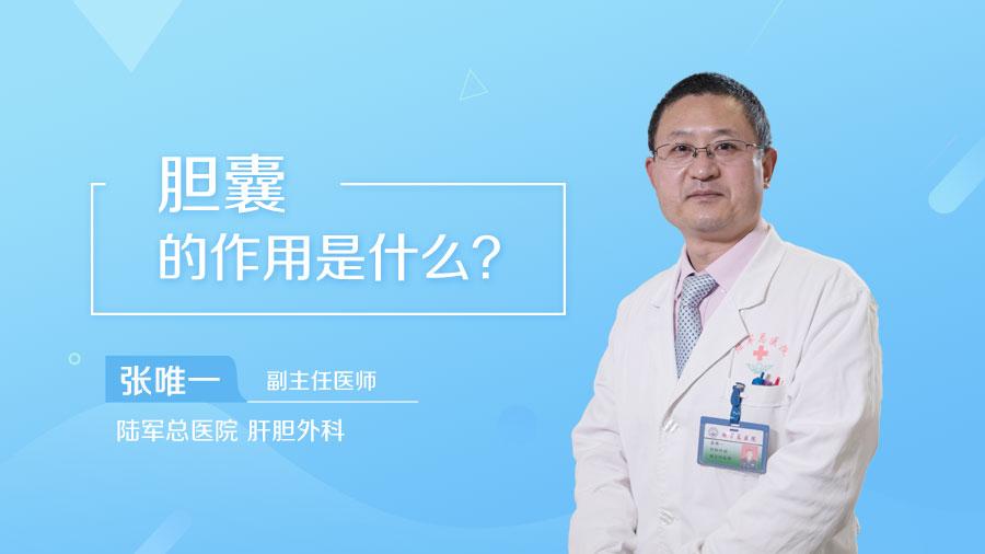 胆囊的作用是什么