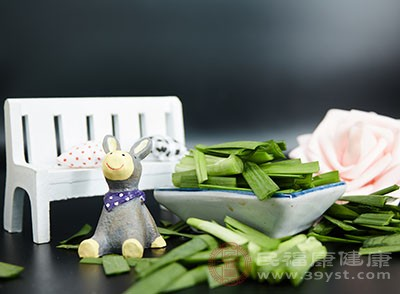 韭菜的功效 常吃韭菜能够治疗这个病